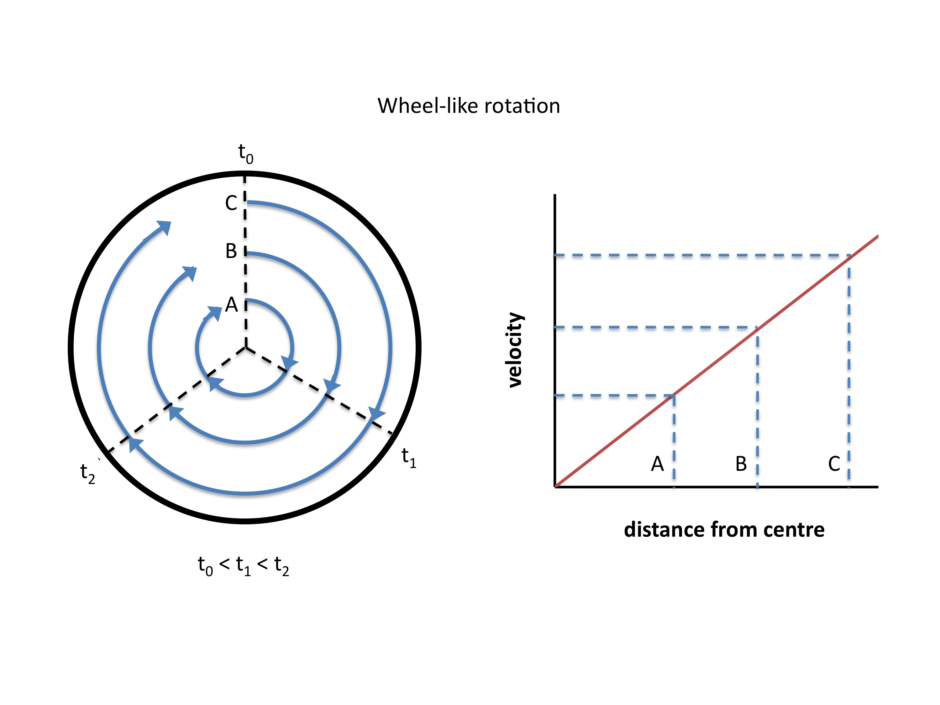 Diagram showing wheel-like rotation