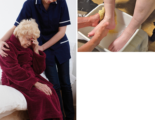 The healthcare assistant role: View as single page