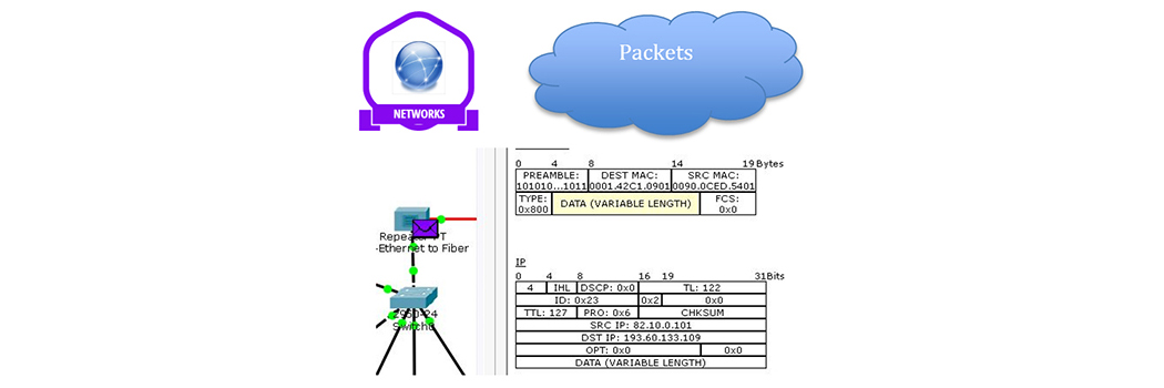 Introduction to Data networks and IP addresses