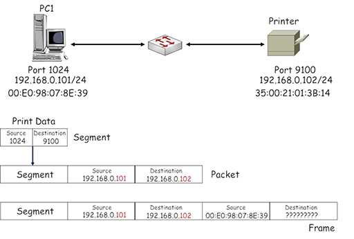 The operation of LAN and WAN hardware and protocols: View as single page