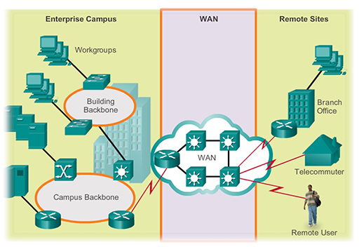 The Operation Of LAN And WAN Hardware And Protocols View As