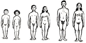 Young people at different age groups (showing physical changes)