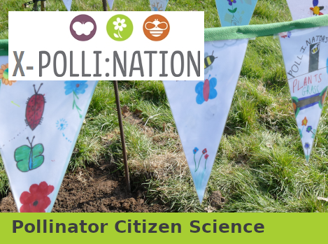 Pollinator Citizen Science