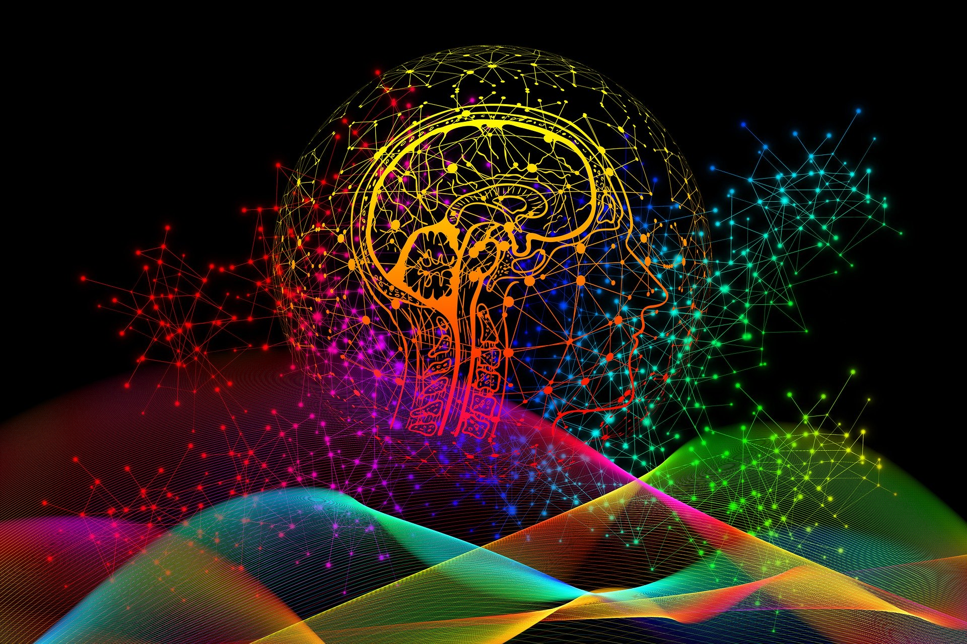 Neuroplasticity:- Discover the full Potential of your Brain