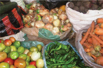 Hygiene and Environmental Health Module: 10  Food Protection