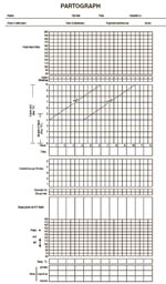 The partograph showing where to enter the patient's identification details at the top and the graphic component below.