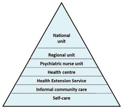 The structure of the mental healthcare system