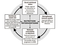 Nutrition Module: 12  Nutrition and HIV: View as single page