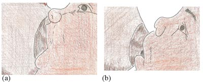 Two images side by side. The image on the left shows the baby with a good mouthful of breast and the image on the left shows a baby that does not have enough breast in its mouth.