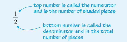 """The fraction """"one-half"""" is shown as a one over a two, with a horizontal line between the two numbers. An arrow points to the one with the comment """"top number is called the numerator and is the number of shaded pieces."""" An arrow points to the two with the comment """"bottom number is called the denominator and is the total number of pieces."""""""