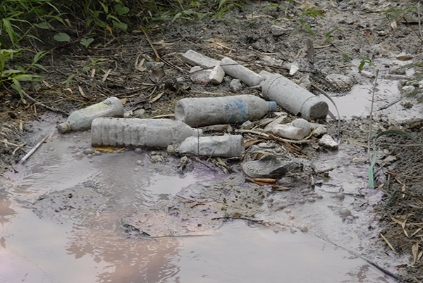 Photo of a polluted stream with discarded bottles